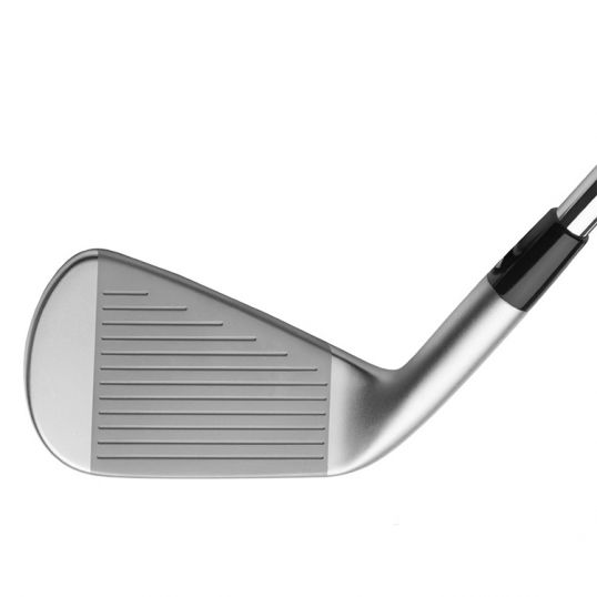 JPX 919 Forged Irons Steel Shafts